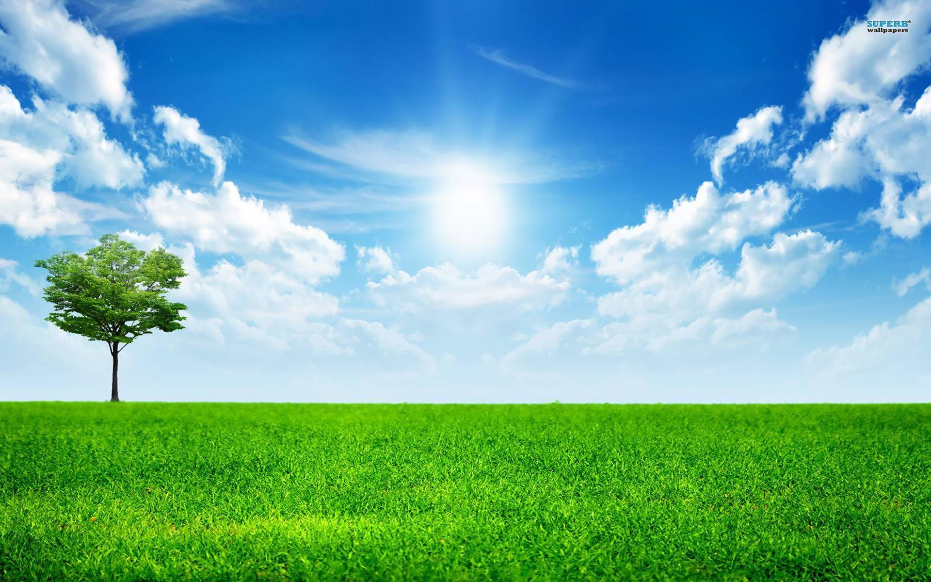 a_bright_sunny_day